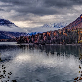 Summit Lake from the back by Patricia Phillips - Landscapes Travel ( alaska lakes autumn summit )