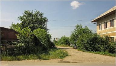Photo: Turda - Str. Fabricii, curpen de padure - 2019.06.22
