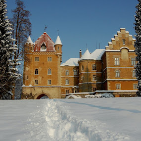 view from deep snow by Dragutin Vrbanec - Buildings & Architecture Public & Historical ( winter, snow, croatia, castle )