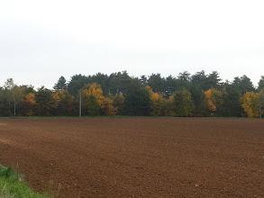 Photo: Couleurs d'automne