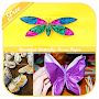 Beautiful Butterfly Tissue Paper APK icon