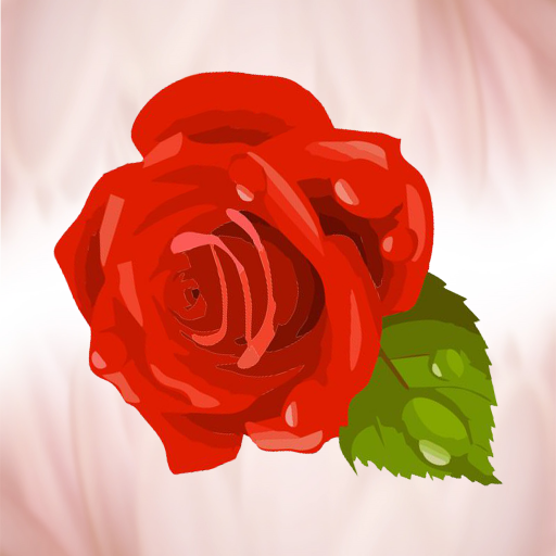 Роза 25 (Доставка цветов)
