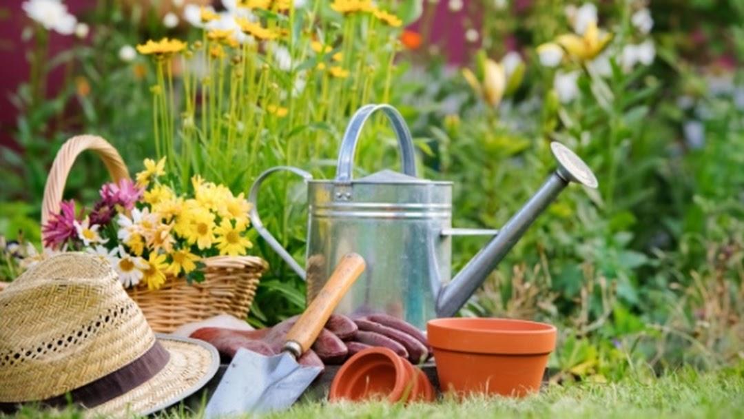 Jardinerie St Leger Magnazeix Garden Center In Saint Leger Magnazeix