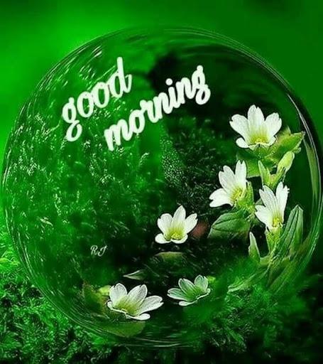 Good Morning Flowers 3.8 screenshots 1