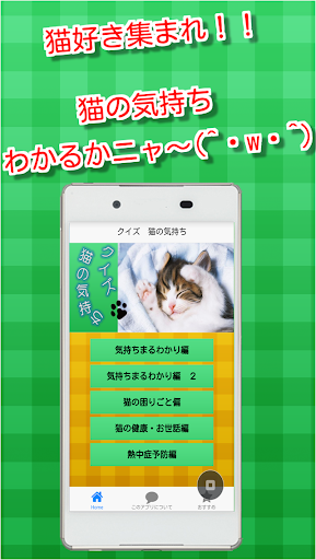 クイズ 猫の気持ち ~わかるかニャ?~ 猫好き集まれ!!