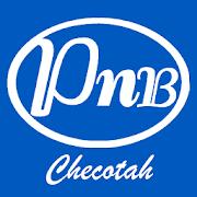 Peoples National Bank Checotah