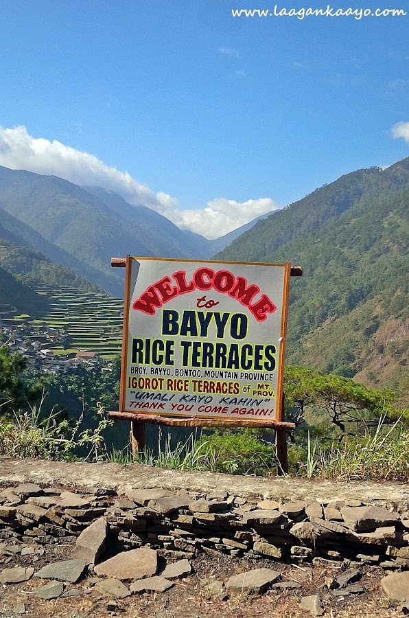 Laagan Kaayo in Banaue Rice Terraces Ifugao