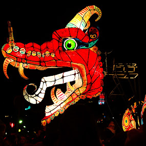 Dragon by Catherine Guerenne - Artistic Objects Other Objects ( dragon rouge, dragon, fête des lumières lyon, red dragon, lyon,  )