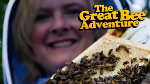 The Great Bee Adventure thumbnail
