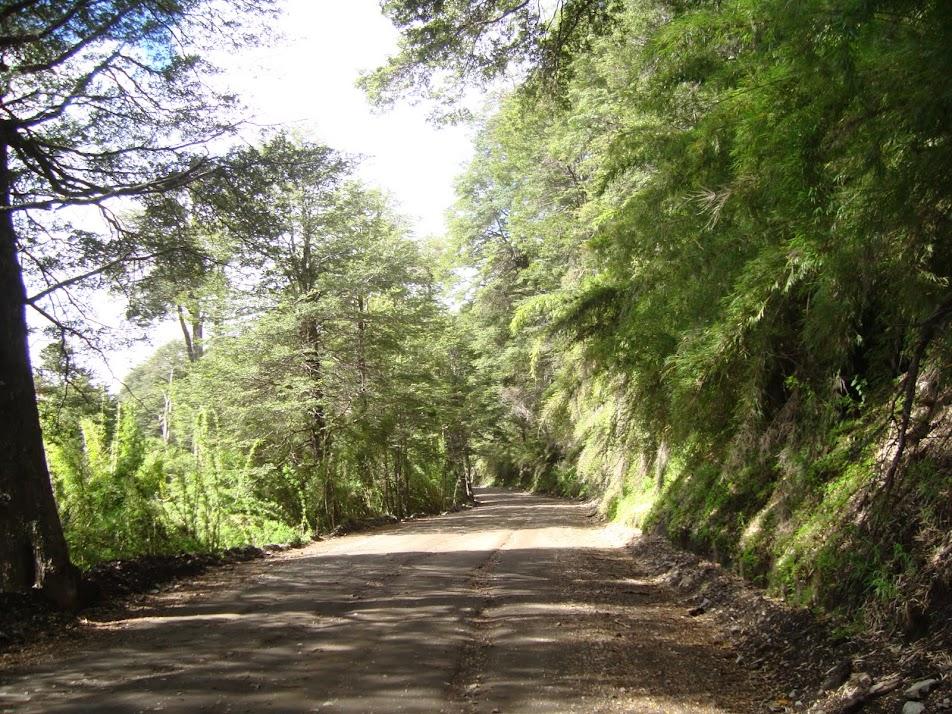 Camino a Villa Traful