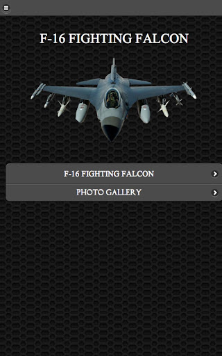✈ F-16 Fighting Falcon FREE
