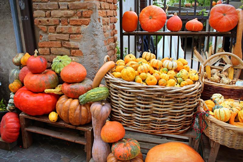 Pumpkin spice di ambibedo