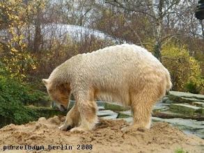 Photo: Jetzt wird sich wieder dem spannenden Sandhaufen gewidmet ;-)