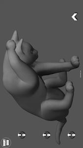Cat Pose Tool 3D screenshot 4