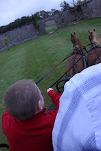 Photo: Colin takes the reins and drives the horses!