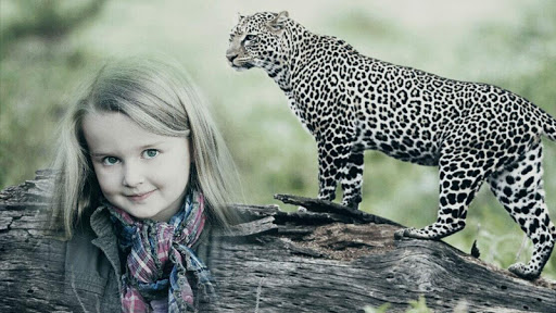Amazing Wildlife Photo Frame for PC