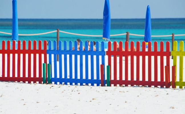 Barriere colorate di viola94
