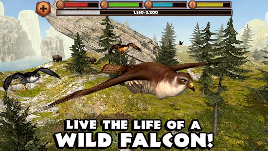 Falcon Simulator - screenshot thumbnail