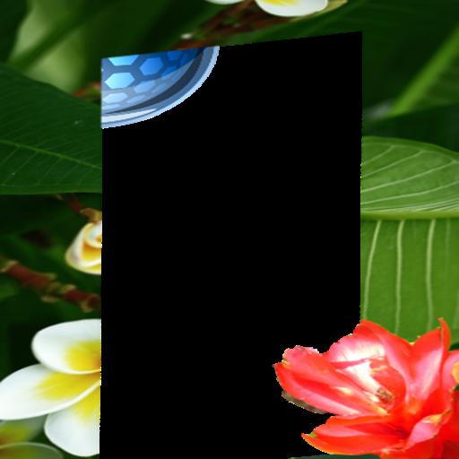 Photo fairies flower frame