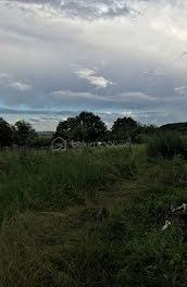 terrain à Merry-la-Vallée (89)