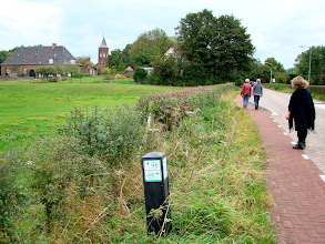 Photo: De herstelde haag langs de weg