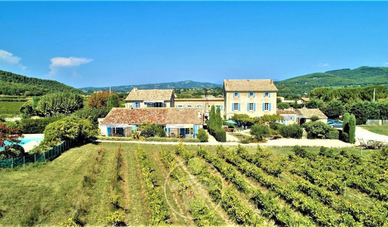 Vineyard Vaison-la-Romaine