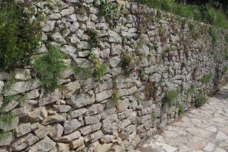 Photo: Muro a secco preesistente