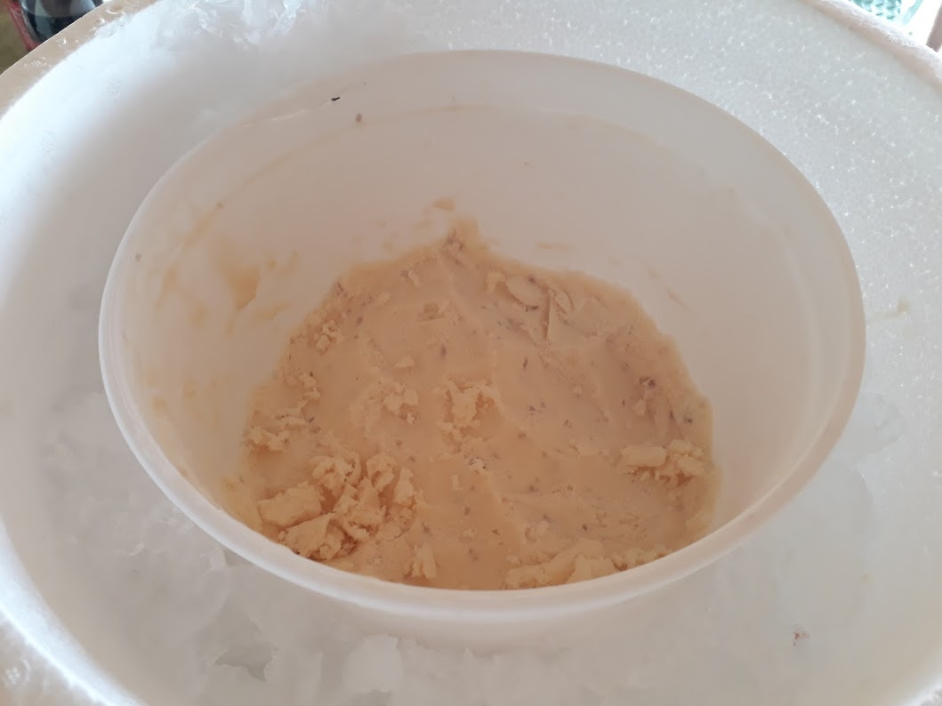 Wiggie's Ice Cream with Styrofoam Bucket