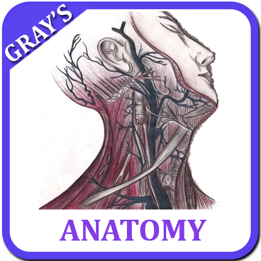 App Insights Grays Anatomy Atlas Offline Free Apptopia