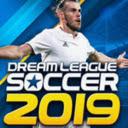 Dream League Soccer Search Icon
