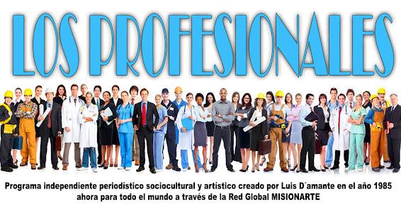 LOS PROFESIONALES MISIONARTE