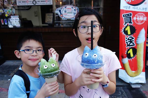 台南安平  餓魚咬冰 韓式冰淇淋~可愛龍貓造型的創意冰品 冰河怪 烏雲冰淇淋!!