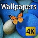 Naturaleza & Mariposas - Fondos HD icon