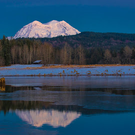 Mt Rainier and Alder Lake by Richard Duerksen - Landscapes Mountains & Hills ( washington, volcano, reflcetion, alder lake, snow, mt. rainier, lake, rainier )