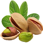 Healthiest Nuts to Eat