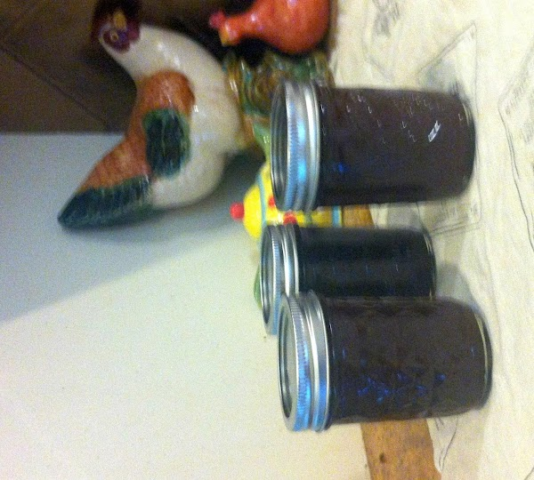 After jars cool, check seals by pressing middle of lid with finger.  If...