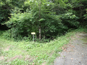 舗装路終端(ヨキトギ)左に
