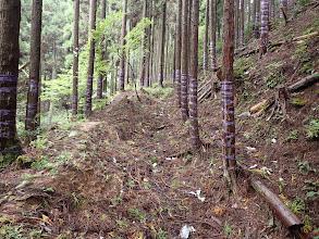 掘れた古い峠道