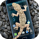 Gecko in Phone scary joke icon
