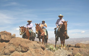 Photo: Riding in the Chihuahuan Desert from our Lajitas Stables is very rewarding.