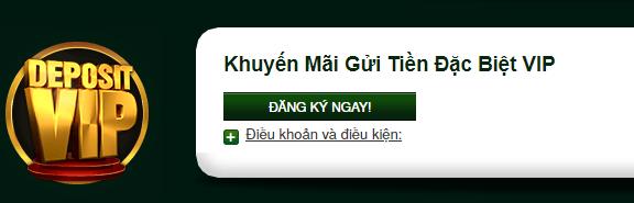 7.Khuyến mãi gửi tiền đặc biệt VIP tại V9bet
