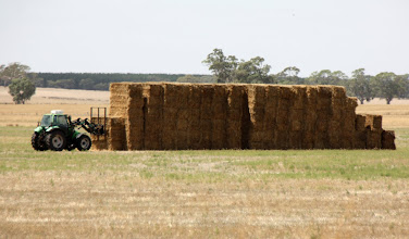 Photo: Year 2 Day 226 - Making Hay While the Sun Shines