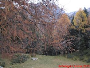 Photo: IMG_4504 autunno dolomitico