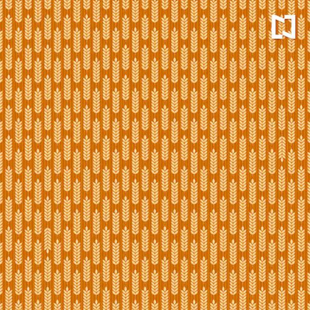 Sua tarefa é encontrar os diferentes ramos de trigo do restante da ilustração.  (Foto: Noticieros Televisa)