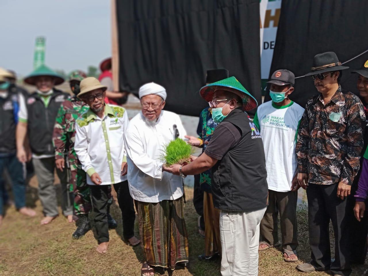 Peran Pesantren Indonesia YP31 Dan Global Wakaf ACT, Tingkatkan Kesejahteraan Petani di Mojokerto