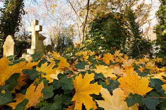 Photo: Highgate Cemetery, London.