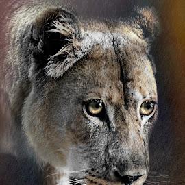 On the hunt by William Underwood  - Digital Art Animals