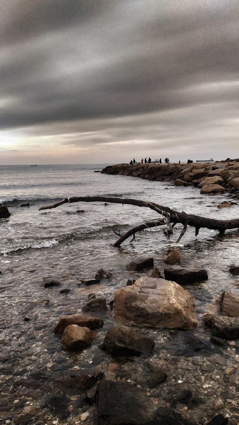 Mare d'inverno di Luce65