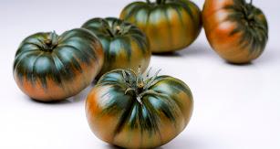 Tomate Raf.
