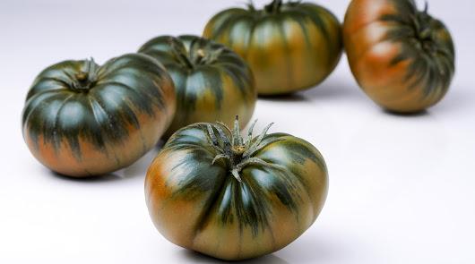 CASI analiza por qué el tomate del Levante es especial